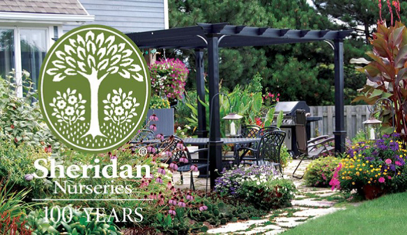 Sheridan Nurseries Super Value Coupon